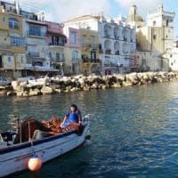 Guerra del pesce, ricorso al Tar di Procida contro Ischia