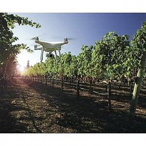 Castel dell'Ovo, a Vitigno Italia convegno sull'agricoltura sostenibile