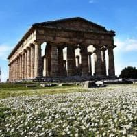 Paestum, gladiatori e matrone negli scavi per rivivere l'antica Roma