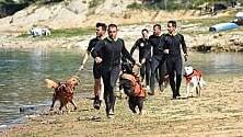 I cani da salvataggio fanno gli esami