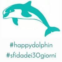 La sfida di Happy Dolphin a Blue Whale, per ricordare ai ragazzi: #iovalgo