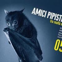Pipistrelli, questi sconosciuti. Al Pan il massimo esperto italiano e una