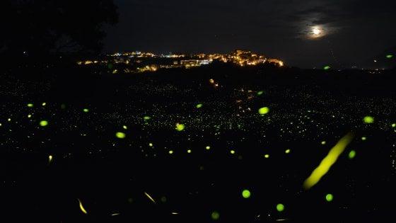 """Contursi Terme, l'ultima frontiera del turismo: """"Qui vengono a vedere le lucciole"""""""