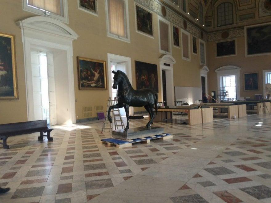 Mann, il cavallo Mazzocchi esposto nel Salone della Meridiana