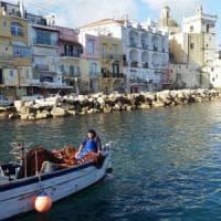 Guerra del pesce, il Tar accoglie il ricorso di Procida contro Ischia