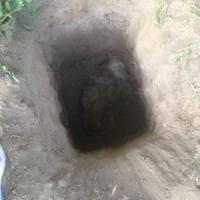 Cane da caccia sepolto vivo e cuccioli decapitati