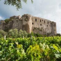 Ischia, nasce il vino del Castello aragonese
