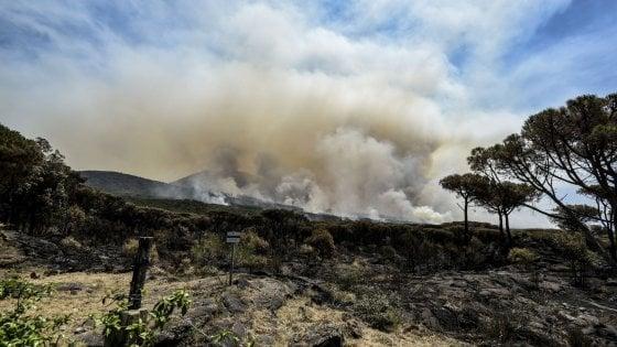 Rogo sul Vesuvio, un piromane incastrato dalle telecamere