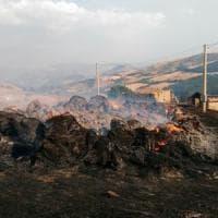 Incendi, la provincia di Potenza continua a bruciare