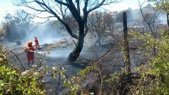 Incendi: arrestato piromane nel Parco nazionale del Cilento