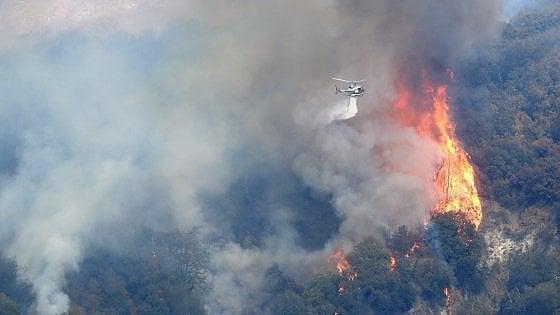 Astroni: le fiamme distruggono un terzo dell'area protetta
