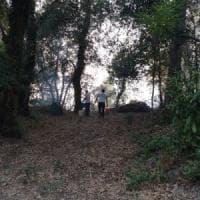 Incendi: tre agricoltori denunciati nell'Avellinese