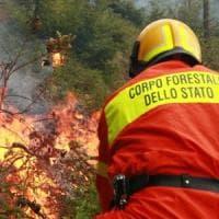 Incendi: capo squadra Comunità montana sorpreso a dare fuoco