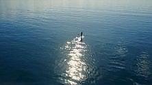 Da Napoli a Ischia  su una tavola da surf