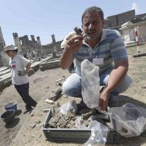 """Carlo Rescigno: """"A Pompei si è scavato tanto ma c'è ancora molto da esplorare. Avremo sorprese"""""""