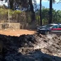 Vesuvio, preso il piromane che ha distrutto 10 mila metri quadri del Parco