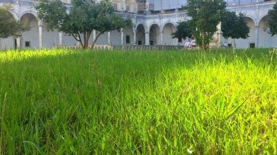 """La Certosa di San Martino negata: erba e sale chiuse. """"Poco personale"""""""