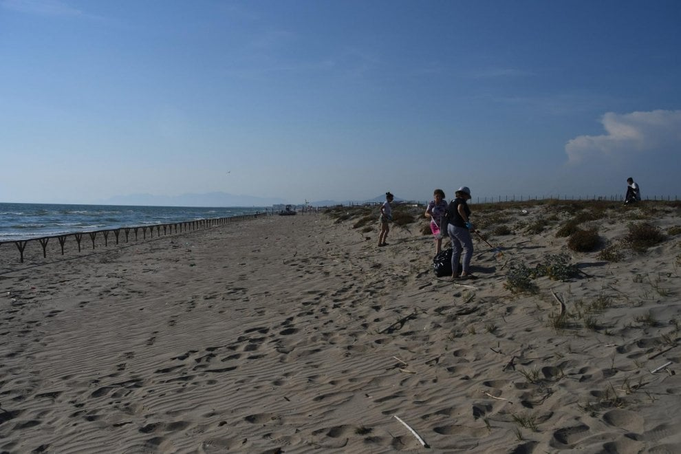 "Via libera per le tartarughe in spiaggia, Castelvolturno diventa ""Caretta caretta friendly"""
