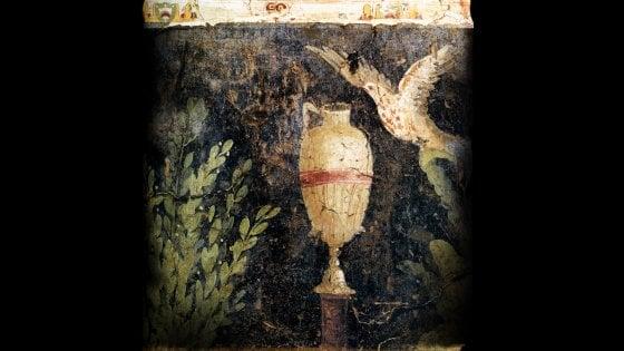 Scavi di Ercolano: gli antichi graffiti diventano tweet