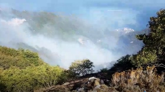VIDEO Così ha dato fuoco al Monte Faito, ecco il piromane