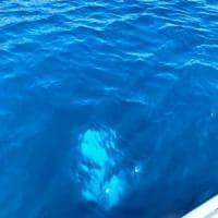 Cilento, Ferragosto tra barche affondate e salvataggi in mare