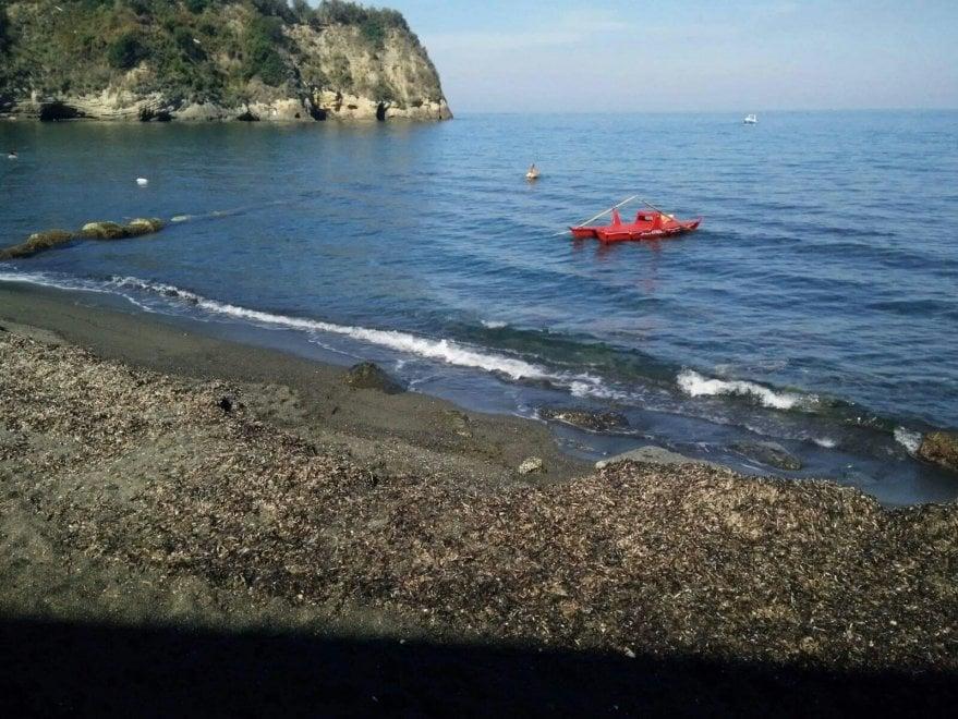 """Procida, la spiaggia de """"Il Postino"""" coperta di alghe"""