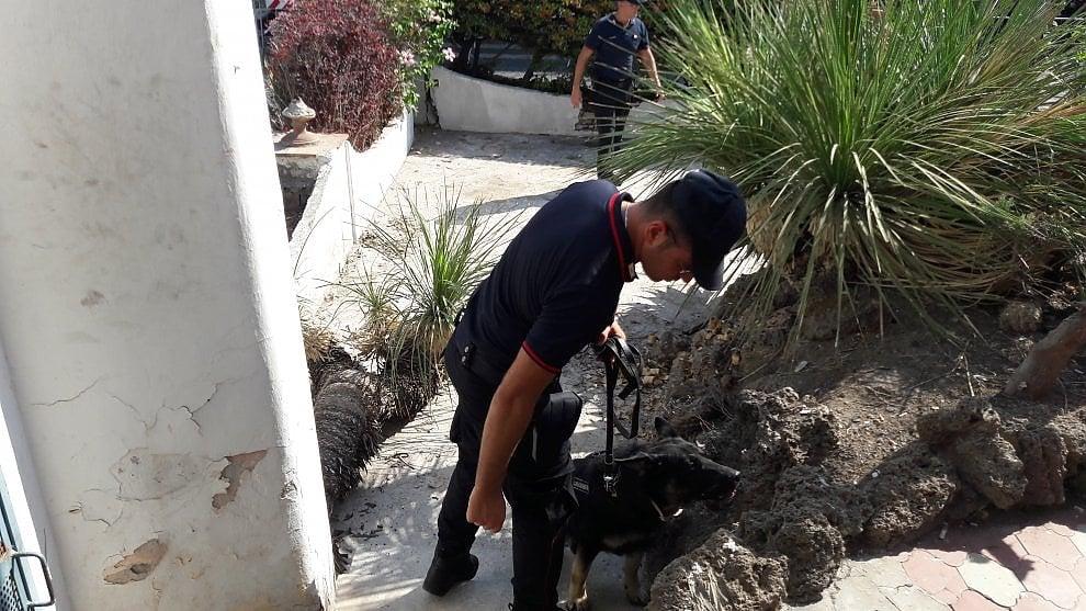 Sicurezza, cani anti esplosivo per la visita di Mattarella a Ischia