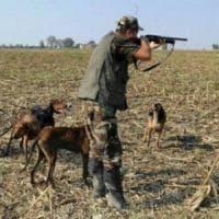 Rispettare la natura, sospendere la caccia
