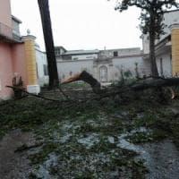 Maltempo: allagamenti e tetti divelti nel Casertano, chiuso il Parco della Reggia