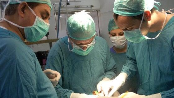 Espianto multiplo a Napoli, nuova vita per sei pazienti