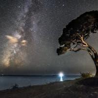 Castellabate, il pino, il faro e le stelle: Benvenuti al Sud