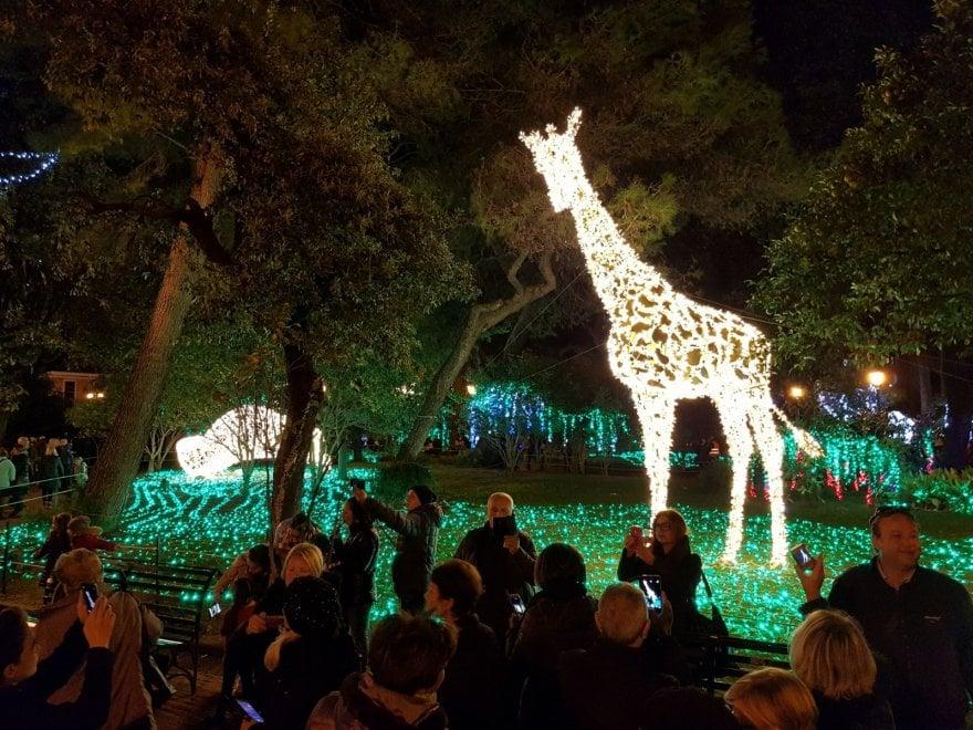 Luci d'artista a Salerno: la Villa comunale diventa uno Zoo luminoso