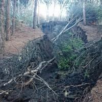 """La denuncia M5S: """"Un costone del Parco Nazionale del Vesuvio è crollato """""""