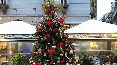"""Bar Gambrinus: """"Vigilanti per proteggere dai furti il nostro albero di Natale"""""""