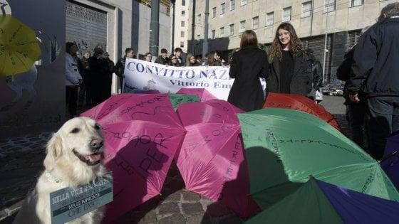 Movida selvaggia, Napoli sfila con gli ombrelli colorati