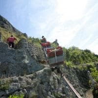 Dai viticoltori di Ischia ai contadini volanti di Amalfi, al via il censimento dell'agricoltura eroica