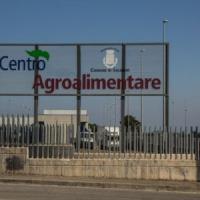 Blitz dei Carabinieri del Nas di Salerno al Mercato Ortofrutticolo. Sequestrate