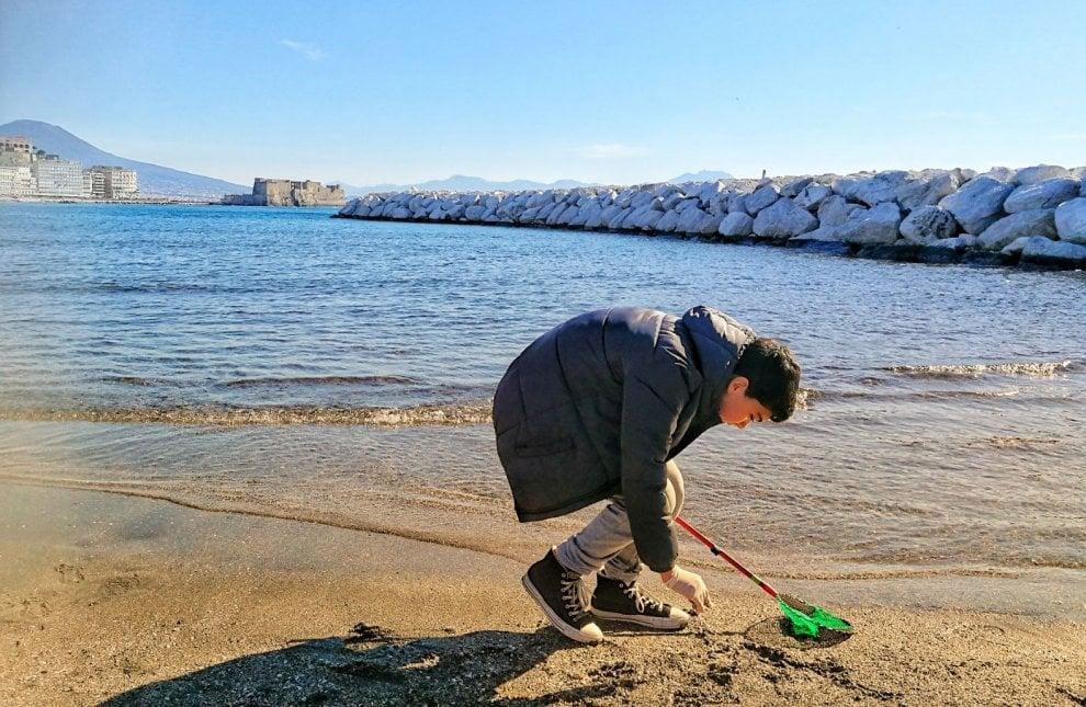 Sul lungomare di Napoli cercando conchiglie: così gli studenti della Fiorelli scoprono la biodiversità