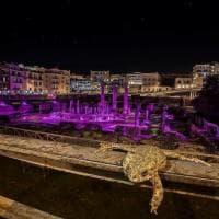 Il rospo e il tempio di Serapide illuminato: la foto diventa virale