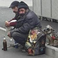 Clochard e cani maltrattati, la legge non aiuta