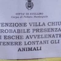 Avellino, polpette avvelenate: resta chiusa la Villa Comunale