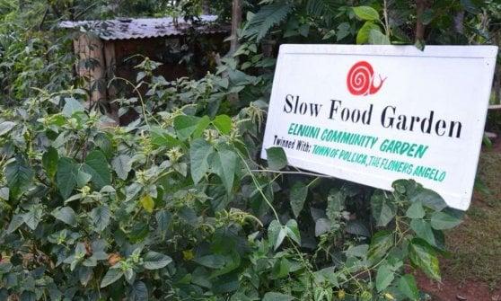 """Dodici orti in Africa in memoria di Angelo Vassallo raccontano la speranza """"coltivata"""" con SlowFood"""