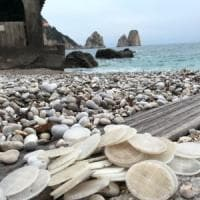Dischetti di plastica spiaggiati, il caso finisce in Procura