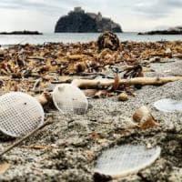 Dischetti di plastica, l'ora della pulizia:  a Ischia il Regno di Nettuno