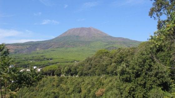 Rifiuti, nell'area del parco del Vesuvio sequestrate 14 aziende