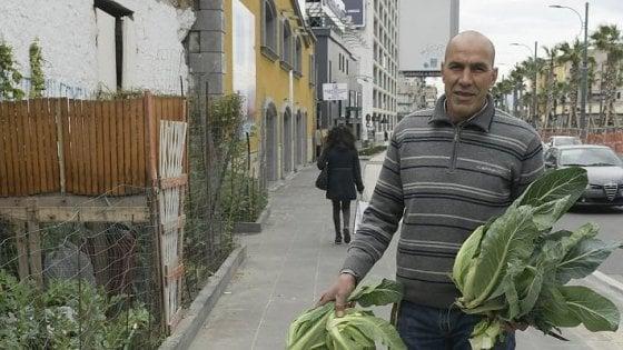Mustafa, la bellezza dell'orto e l'amore delle piccole cose