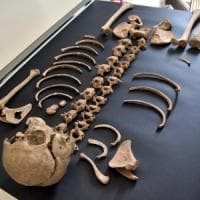 Pompei, al via le analisi di laboratorio sullo scheletro delle Terme centrali