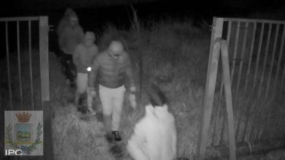 """""""Aiutateci a trovarli"""". Il sindaco di Giugliano diffonde le immagini di sei giovanissimi ladri"""