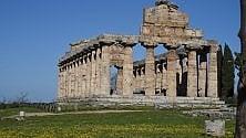 """Paestum, al Parco Archeologico il premio """"Cultura + Impresa"""""""