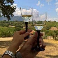Cantine aperte, la Campania e i mille sentieri del buon vino